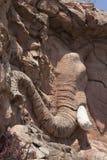 Αφρικανική επικεφαλής ανακούφιση ελεφάντων, τεχνητοί βράχοι στην πόλη ήλιων, Νότια Αφρική Στοκ Εικόνες