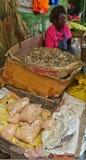 Αφρικανική κυρία που πωλεί τα ξηρά ψάρια Στοκ Εικόνες