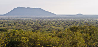 αφρικανική misty αγριότητα λόφων Στοκ φωτογραφία με δικαίωμα ελεύθερης χρήσης