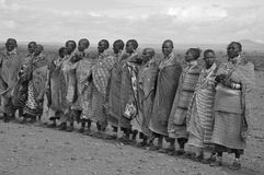 Αφρικανικοί λαοί από τη φυλή Masai Στοκ Εικόνα