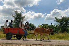 αφρικανικοί λαοί Στοκ εικόνες με δικαίωμα ελεύθερης χρήσης