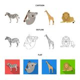 Αφρικανικό ζέβες, ζωικό koala, giraffe, άγριο αρπακτικό ζώο, λιοντάρι Τα άγρια ζώα καθορισμένα τα εικονίδια συλλογής στα κινούμεν Στοκ φωτογραφία με δικαίωμα ελεύθερης χρήσης