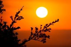 αφρικανικό ηλιοβασίλεμα Στοκ φωτογραφία με δικαίωμα ελεύθερης χρήσης