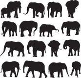 Αφρικανικό περίγραμμα σκιαγραφιών ελεφάντων Στοκ εικόνες με δικαίωμα ελεύθερης χρήσης