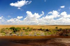 Αφρικανικό τοπίο αγριοτήτων Στοκ Εικόνες