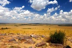 Αφρικανικό τοπίο αγριοτήτων Στοκ εικόνα με δικαίωμα ελεύθερης χρήσης