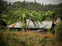 αφρικανικό χωριό Στοκ Εικόνες