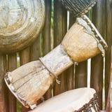 Αφρικανικό Bongo Στοκ φωτογραφίες με δικαίωμα ελεύθερης χρήσης
