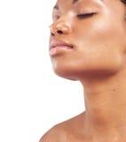 αφροαμερικανίδα ομορφι Στοκ Εικόνες