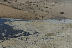 Αφρός θάλασσας από την παραλία στοκ φωτογραφίες με δικαίωμα ελεύθερης χρήσης