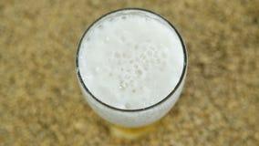 Αφρός μπύρας από το λυκίσκο που παρασκευάζεται σε ένα ιδιωτικό ζυθοποιείο τεχνών στα πλαίσια ενός ελαφριού σιταριού βύνης κατά τη απόθεμα βίντεο