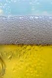 Αφρός της μπύρας Στοκ φωτογραφία με δικαίωμα ελεύθερης χρήσης