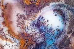 Αχάτης βρύου Στοκ εικόνα με δικαίωμα ελεύθερης χρήσης