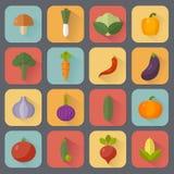 λαχανικά προϊόντων φρέσκιας αγοράς γεωργίας Έννοια διατροφής και οργανικής τροφής επίσης corel σύρετε το διάνυσμα απεικόνισης Στοκ Εικόνες