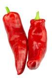λαχανικά προϊόντων φρέσκιας αγοράς γεωργίας Δύο κόκκινα πιπέρια του Ramiro σε ένα άσπρο υπόβαθρο στοκ φωτογραφία με δικαίωμα ελεύθερης χρήσης