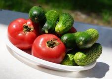 λαχανικά σιτηρεσίου Στοκ φωτογραφία με δικαίωμα ελεύθερης χρήσης
