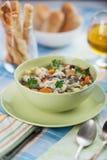 λαχανικά σούπας κοτόπουλου Στοκ φωτογραφίες με δικαίωμα ελεύθερης χρήσης