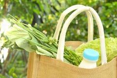 λαχανικό και γάλα στο καλάθι υφάσματος καλύτερα από τη χρησιμοποιημένη πλαστική τσάντα Στοκ εικόνες με δικαίωμα ελεύθερης χρήσης