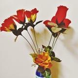 Αχαλίνωτα τριαντάφυλλα Στοκ Εικόνες