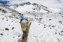 Αχθοφόρος στον τρόπο σε Dingboche στοκ εικόνα με δικαίωμα ελεύθερης χρήσης