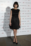 αχθοφόρος της Gillian αυγής του Άντερσον Στοκ Φωτογραφίες