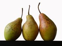 αχλάδια ακόμα τρία ζωής στοκ φωτογραφίες με δικαίωμα ελεύθερης χρήσης