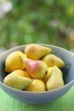 αχλάδια λεμονιών στοκ εικόνες με δικαίωμα ελεύθερης χρήσης