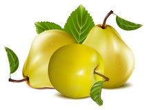 αχλάδια μήλων Στοκ φωτογραφία με δικαίωμα ελεύθερης χρήσης