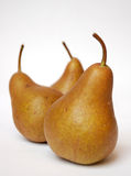 αχλάδια τρία Στοκ Εικόνες