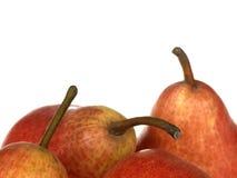 αχλάδι ο κόκκινος Ουίλιαμς Στοκ εικόνα με δικαίωμα ελεύθερης χρήσης