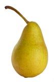 αχλάδι Στοκ Εικόνα