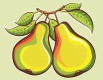 Φρούτα αχλαδιών Στοκ Φωτογραφίες