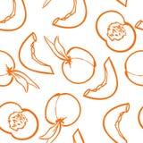αχλάδια πρότυπο καρπού άνευ ραφής επίσης corel σύρετε το διάνυσμα απεικόνισης Στοκ Εικόνα
