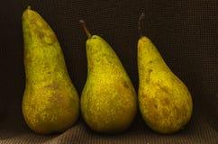 αχλάδια τρία Στοκ φωτογραφία με δικαίωμα ελεύθερης χρήσης