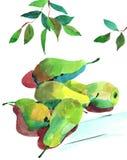 Αχλάδια Watercolour Στοκ φωτογραφία με δικαίωμα ελεύθερης χρήσης
