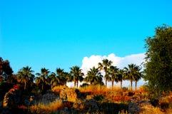 Αψίδα πετρών Amphitatra στοκ φωτογραφία με δικαίωμα ελεύθερης χρήσης