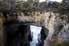 Αψίδα Tasman - Τασμανία - Αυστραλία Στοκ εικόνες με δικαίωμα ελεύθερης χρήσης