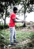 Αϊτινό άτομο στη φυτεία καλάμων ζάχαρης Στοκ εικόνες με δικαίωμα ελεύθερης χρήσης