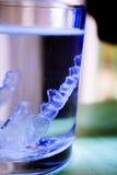 Αόρατος οδοντικός παραταγμένος orthodontics καθαρισμός Στοκ φωτογραφία με δικαίωμα ελεύθερης χρήσης