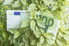 Αύξηση του κέρδους, χρήματα, αποδοχές Στοκ φωτογραφία με δικαίωμα ελεύθερης χρήσης