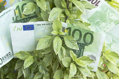 Αύξηση του κέρδους, χρήματα, αποδοχές Στοκ εικόνες με δικαίωμα ελεύθερης χρήσης