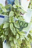 Αύξηση του κέρδους, χρήματα, αποδοχές Στοκ Εικόνα