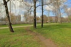 Αλέα άνοιξη Στοκ εικόνα με δικαίωμα ελεύθερης χρήσης