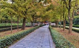 Αλέα κήπων της Κίνας Ναντζίνγκ MIng Στοκ φωτογραφίες με δικαίωμα ελεύθερης χρήσης