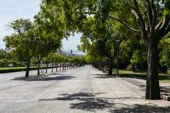 Αλέα πάρκων με τα δέντρα ή Parque Eduardo VII, Λισσαβώνα, Πορτογαλία Στοκ φωτογραφία με δικαίωμα ελεύθερης χρήσης