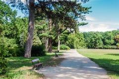 Αλέα πάρκων με τους πάγκους Στοκ Εικόνα
