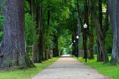 Αλέα πάρκων Στοκ εικόνες με δικαίωμα ελεύθερης χρήσης