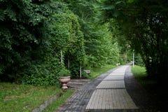 Αλέα πάρκων Στοκ Εικόνα