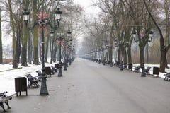 Αλέα πάρκων στοκ εικόνα με δικαίωμα ελεύθερης χρήσης