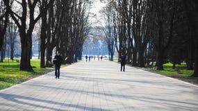 Αλέα στο πάρκο πόλεων Στοκ φωτογραφίες με δικαίωμα ελεύθερης χρήσης